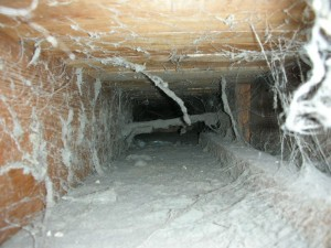 air-duct-cleaning-300x225