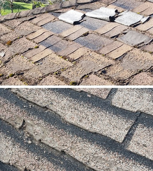Asphalt vs metal roofing renovationfind for Most expensive roof material